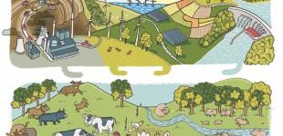 Lydia Keßner Illustration »Möhrchenheft« – das nachhaltige Hausaufgabenheft